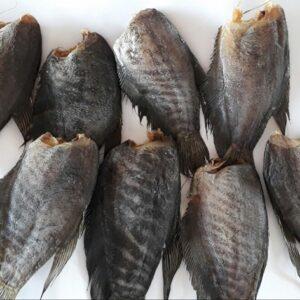 Cá sặc bổi bao nhiêu tiền 1 kg